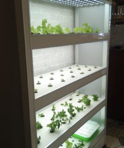 mini indoor vertical farm