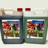 hydroponic-nutrients-general-fruit-XL-A-&-B 10Litre