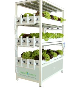 commercial-Indoor-vertical-farming-system