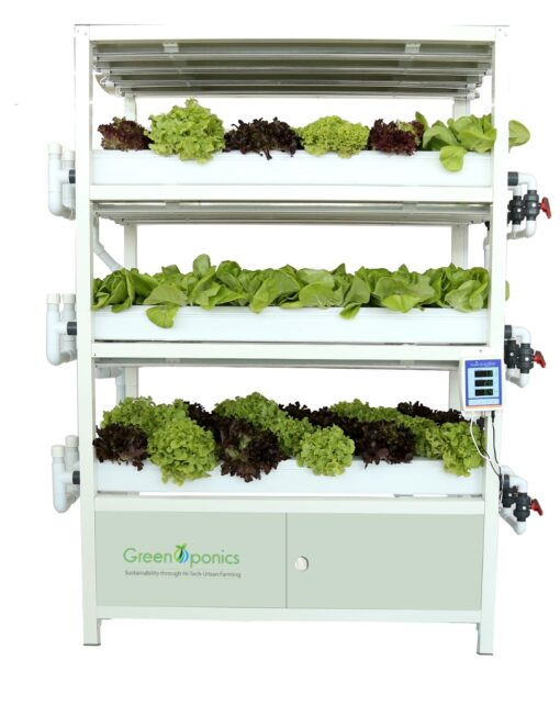 commercial-Indoor-vertical-farming-system UAE